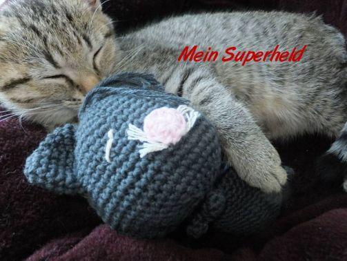 meine Katze als Superheld