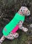 Häkelanleitung Warnweste für Hunde ALLE GRÖSSEN