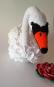 Höckerschwan mit Seerose