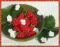 Häkelanleitung Erdbeere