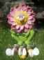 Wunderblume